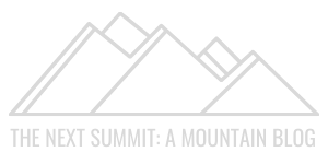 The Next Summit Logo