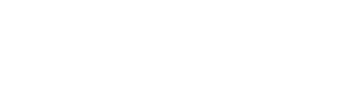 The text logo for The Acoustic Academy.