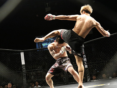 mma-fight