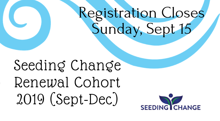Seeding Change Renewal Cohort 2019