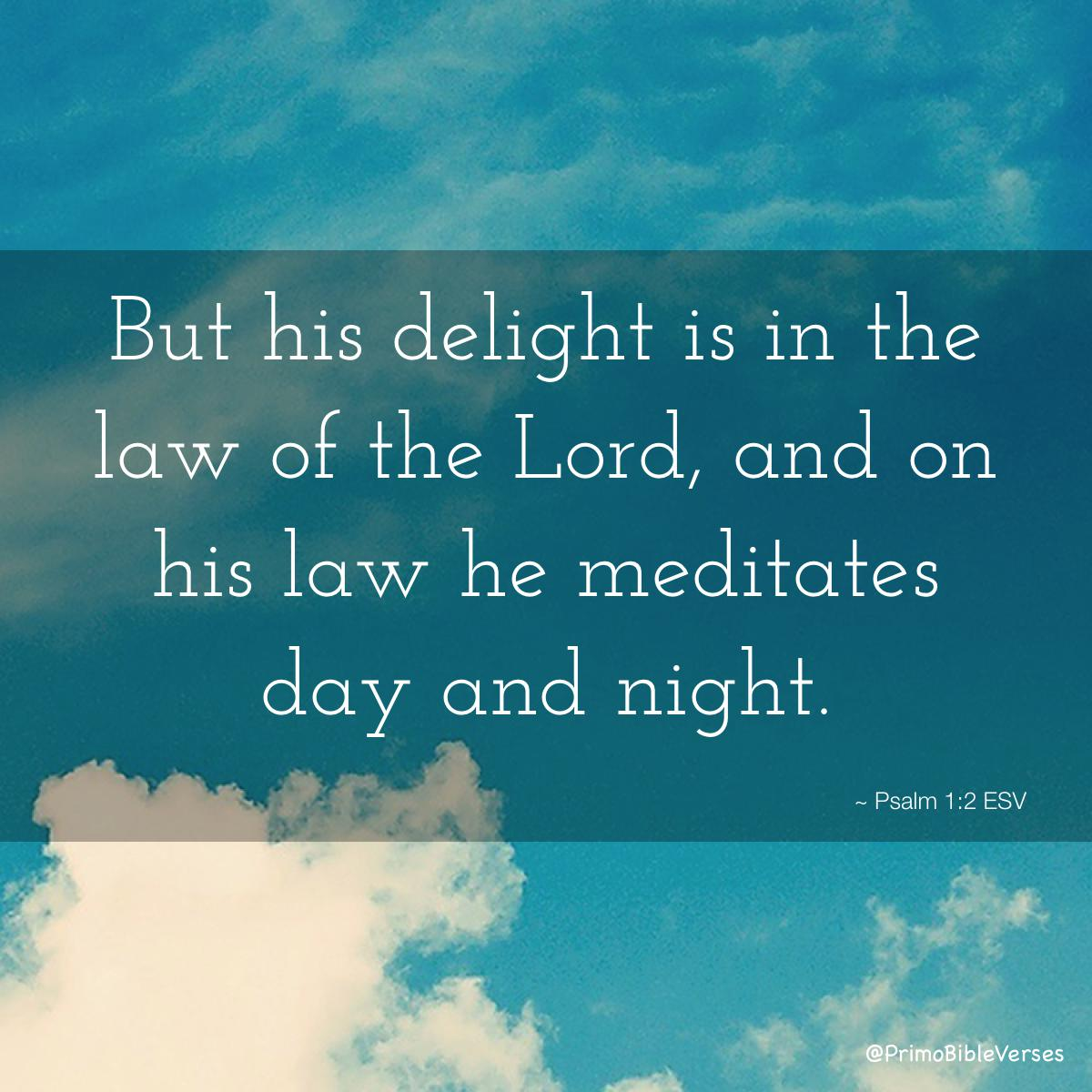 Discover the power of Christian Meditation to: