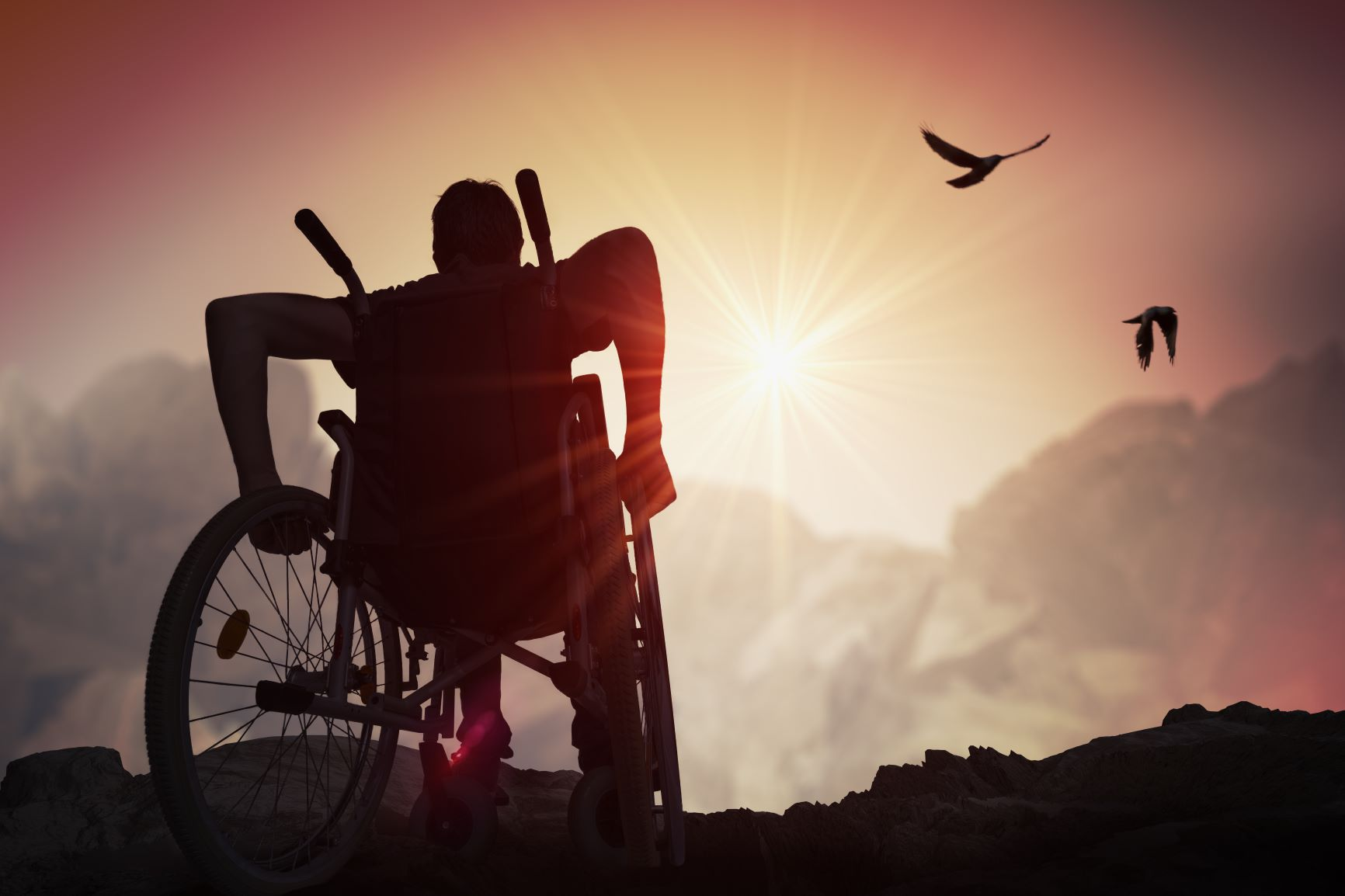 person in a wheelchair looking out at the landscape. Image for decorative purposes only