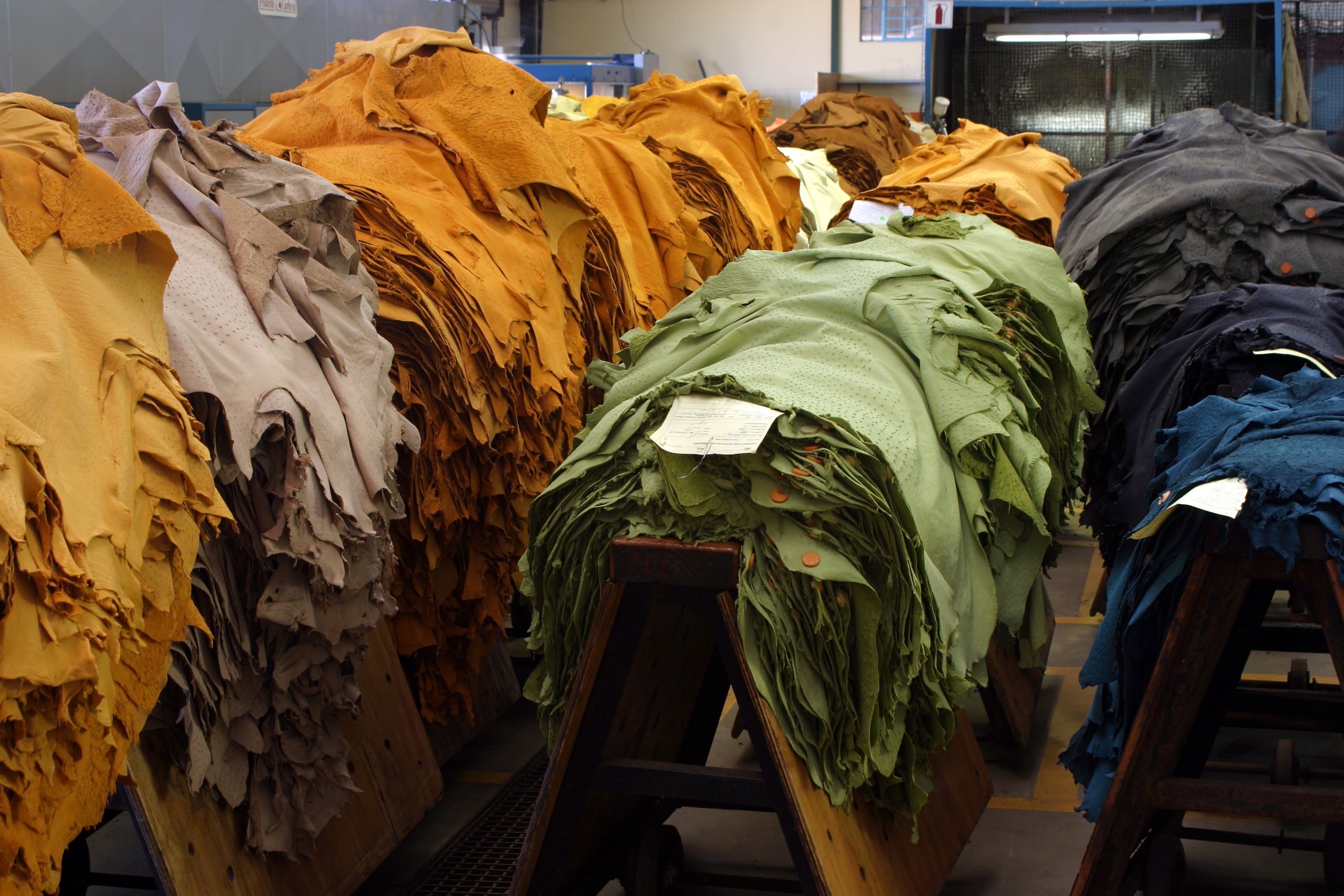 Leather hides during manufacturing