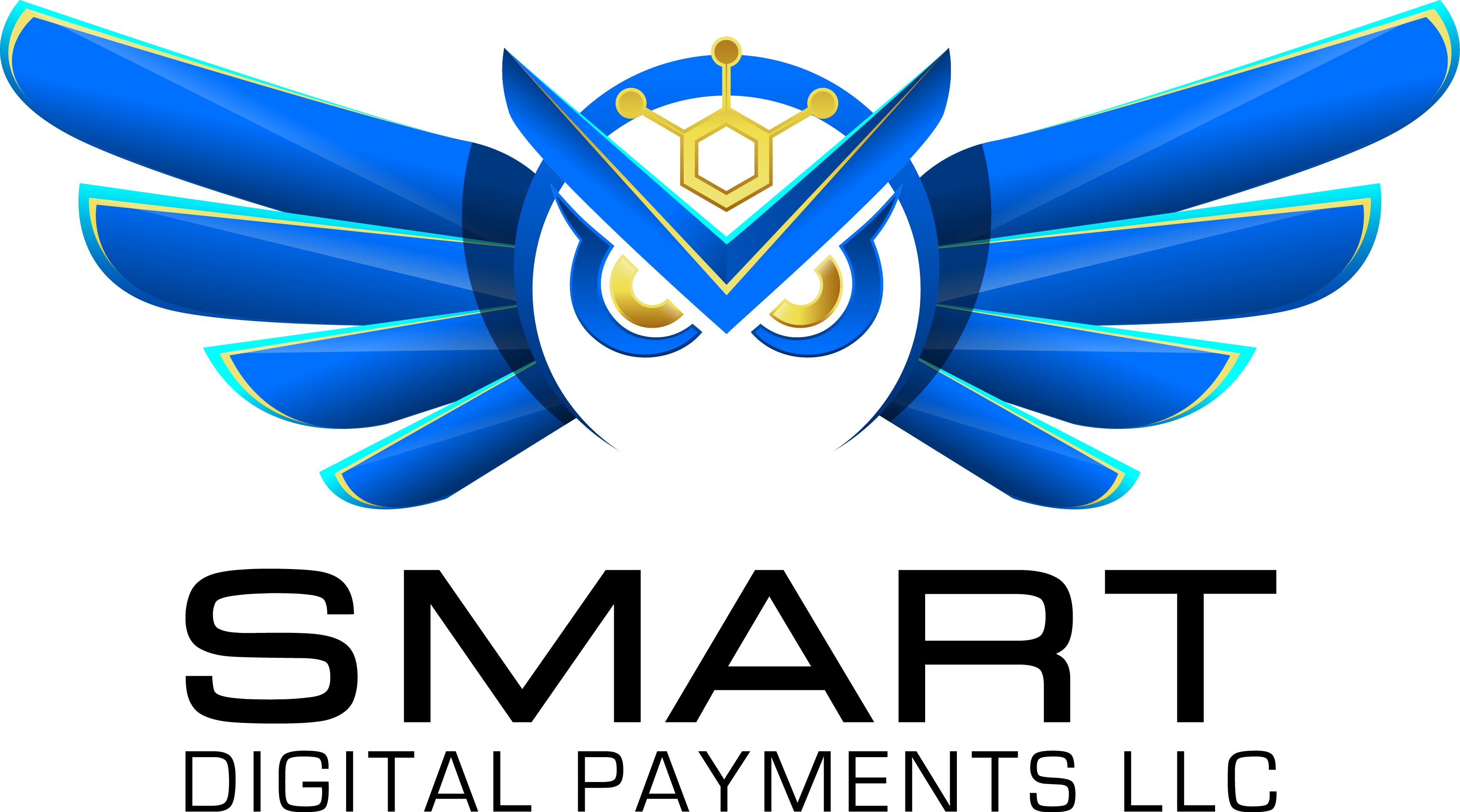 blue owl with piercing gold eyes with text that reads Smart Digital Payments