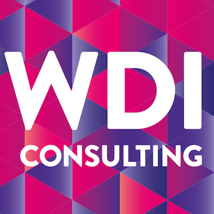 WDI Consulting Limited