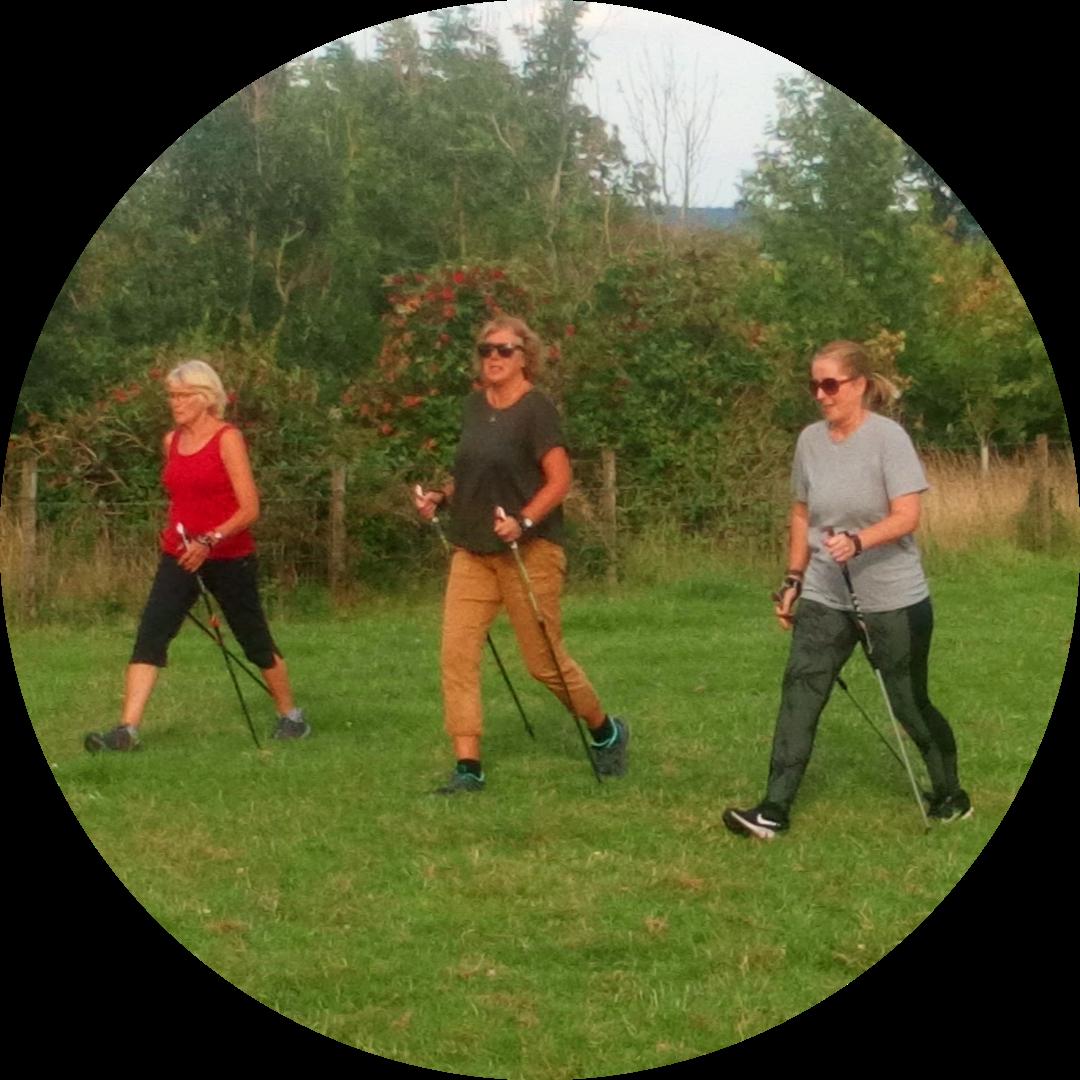Ladies, lets nordic walk!