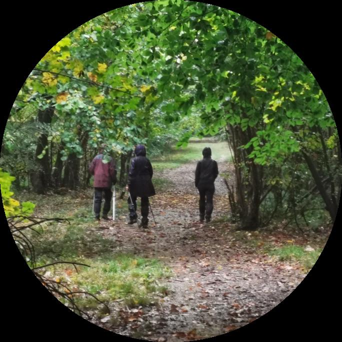 An exceptionally wet Gretfield Wood with Zena, Alex & Debra