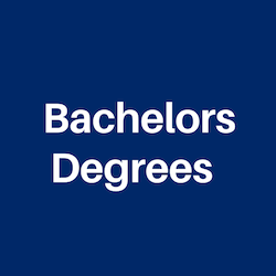 Bachelors Degrees for International Students