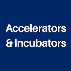 Microlearning for Accelerators and Incubators