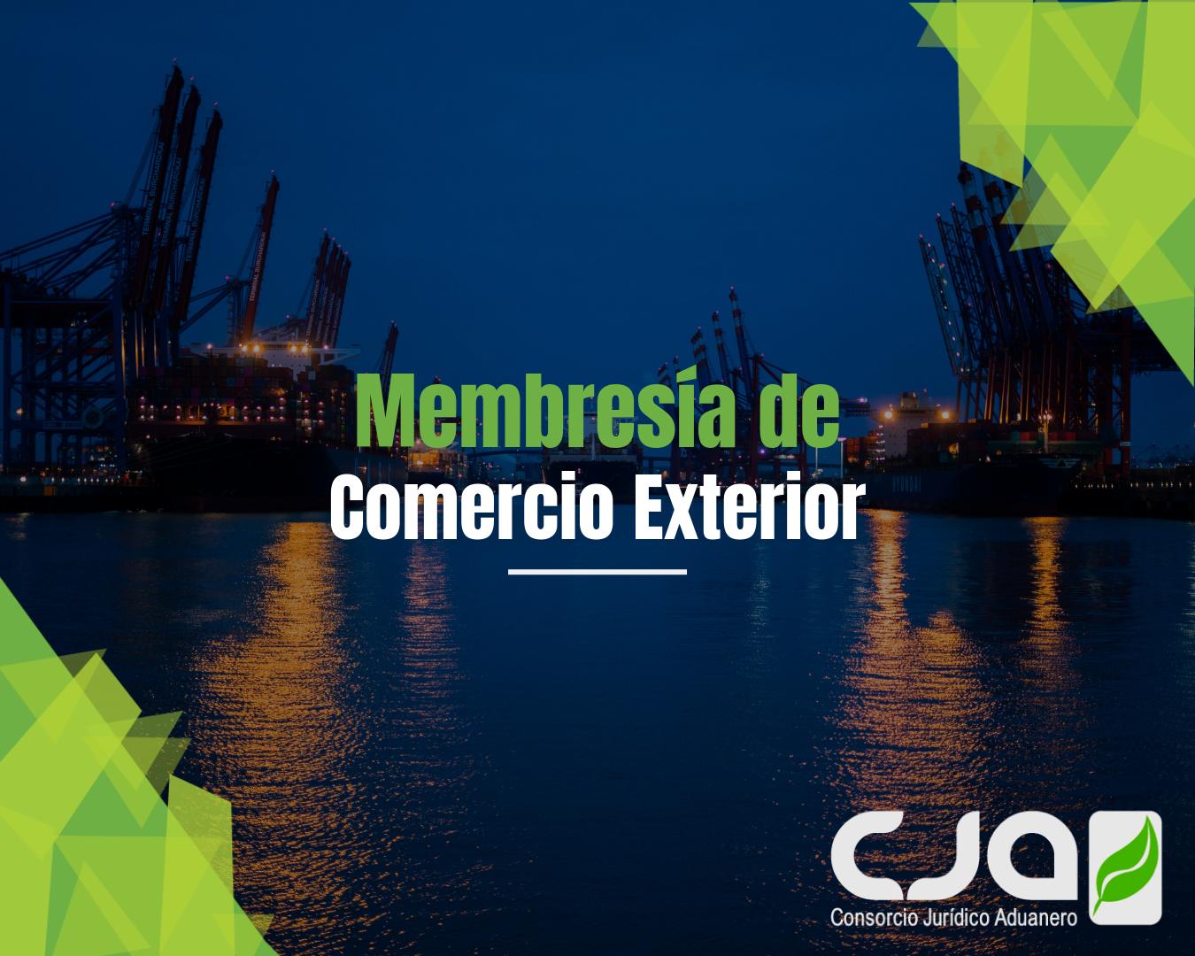 Actualízate, Aprende y conviértete en experto en Comercio Exterior