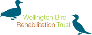 Wellington Bird Rehabilitation Trust