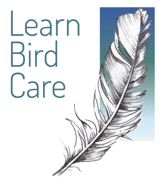 Learn Bird Care Ltd