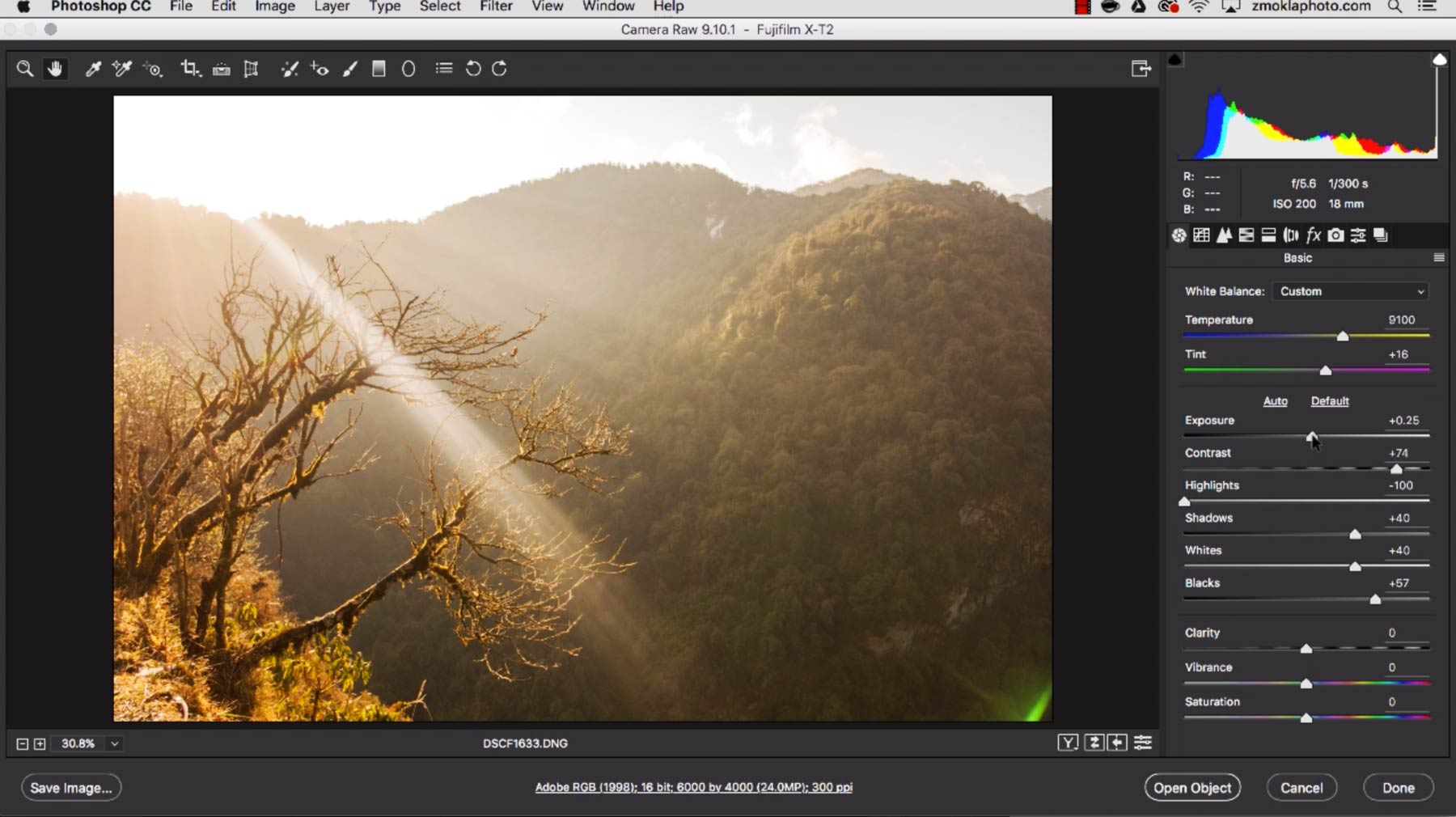 Developing RAW Files In Adobe Camera RAW