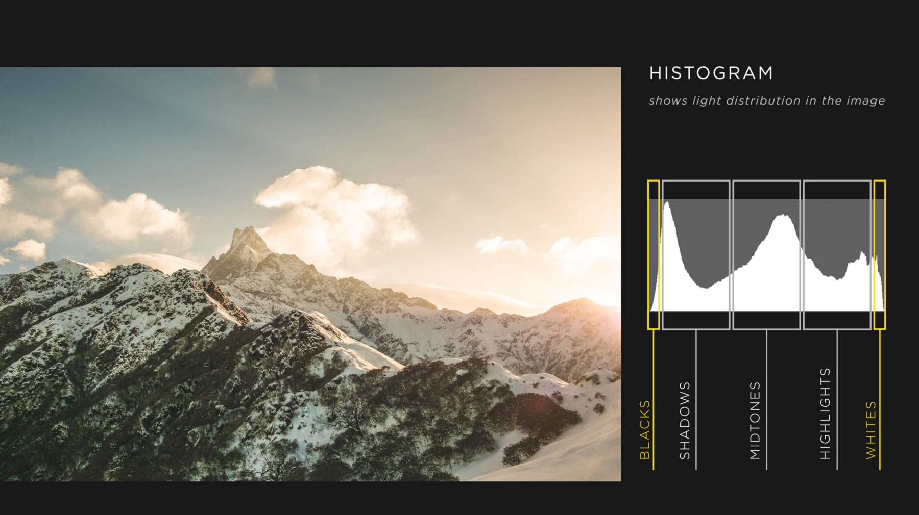 Perfect Your Exposures With The Histogram Tool