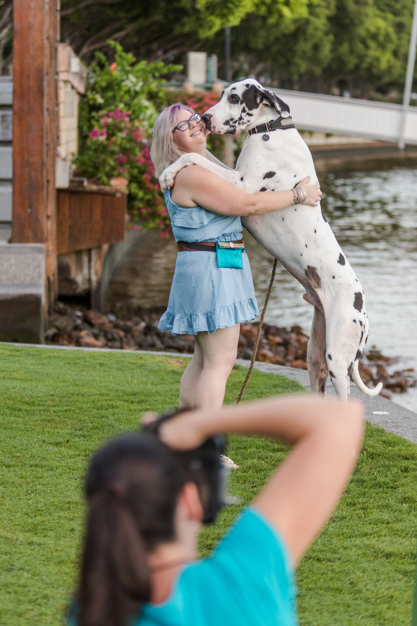 Do you want to get REAL serious about your passion for dog photography?