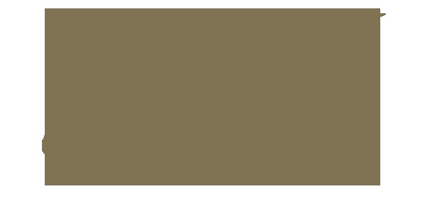 GERnétic International