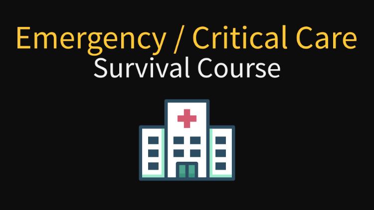 Emergency Medicine Critical Care Survival Course For Nurses