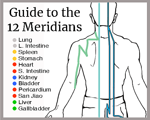 Everything you need to know about the 12 Meridians of Chinese Medicine