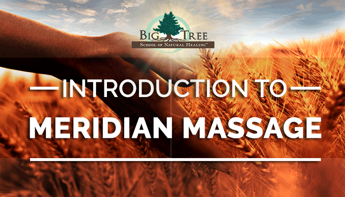 Wondering what Meridian Massage has to offer?