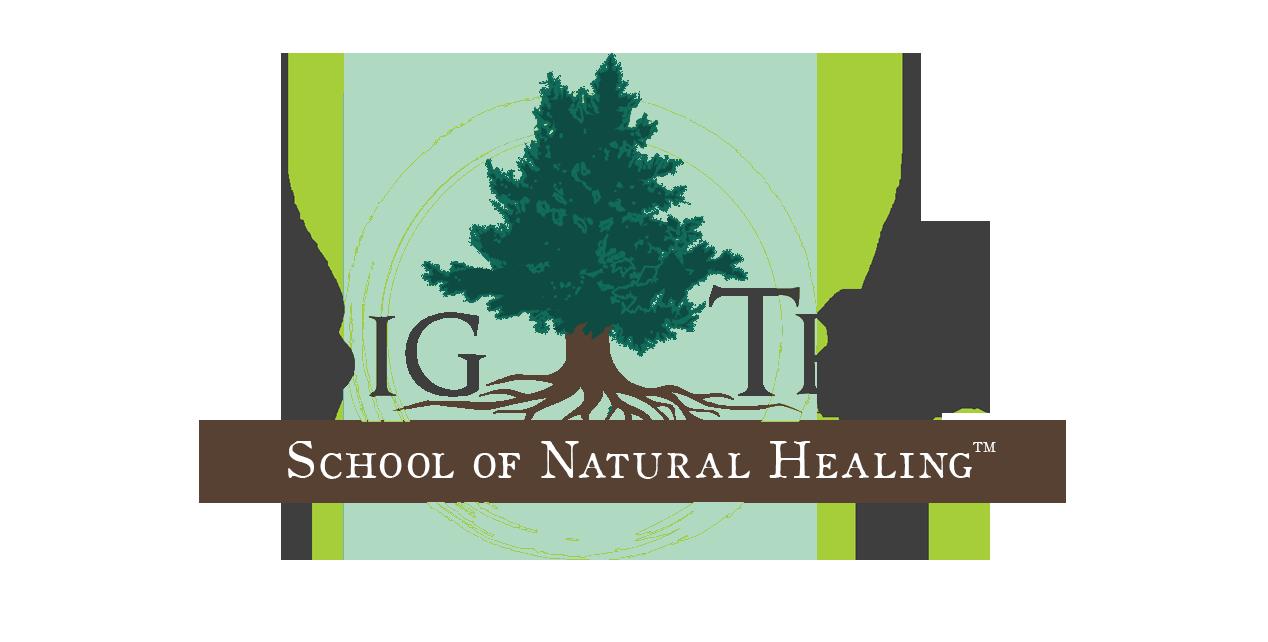 Big Tree School of Natural Healing