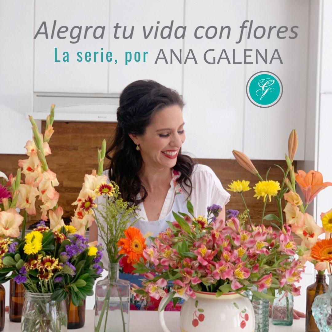 Alegra tu vida con flores