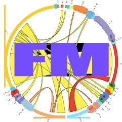 ROM-Chi Energy Meditation