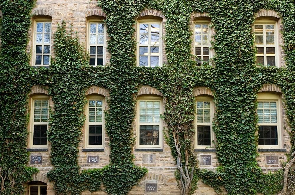 Princeton University IVY League Admissions