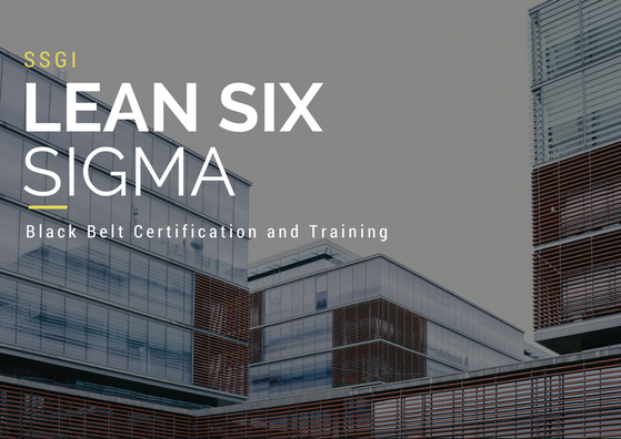 Six Sigma Global Institute