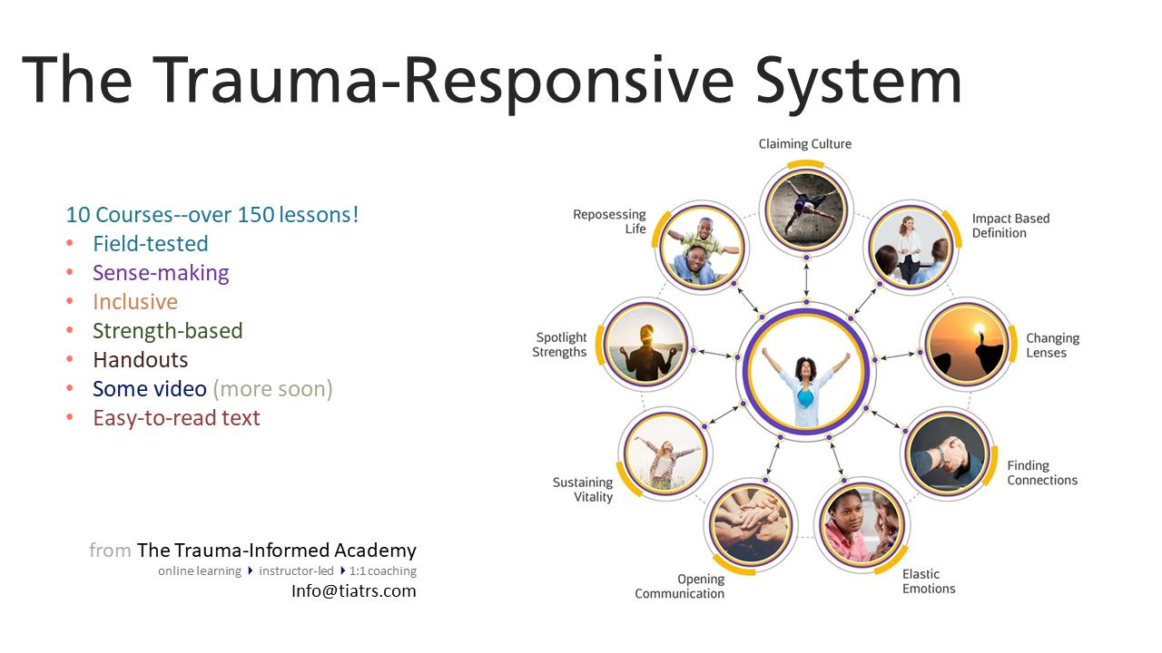 The Trauma-Responsive System