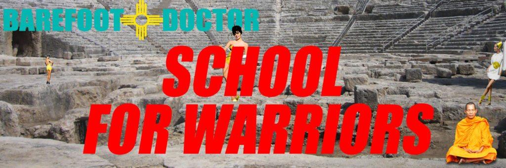 School for Warriors 1, 2 and 3 bundle