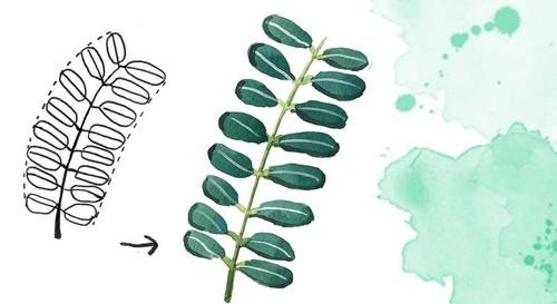 Las hojas y plantas
