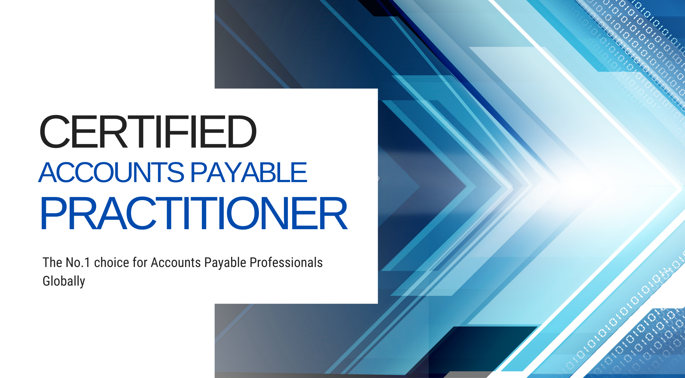 ACAPP Certified Accounts Payable Practitioner (CAPP)