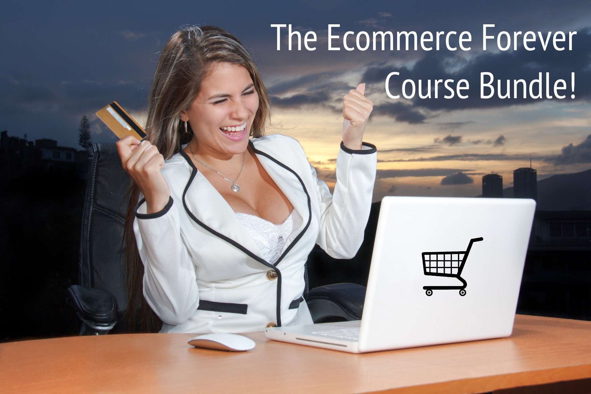 The Ecommerce Forever Course Bundle!