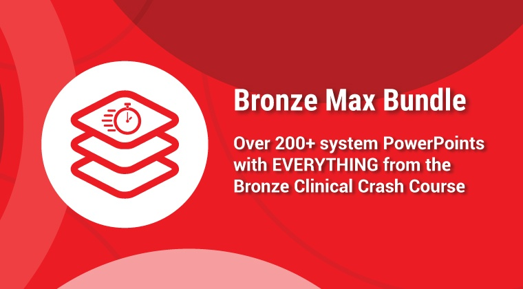 Bronze Max Bundle