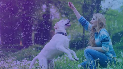 Science-Based Dog Training – with Feeling! (3 Days)