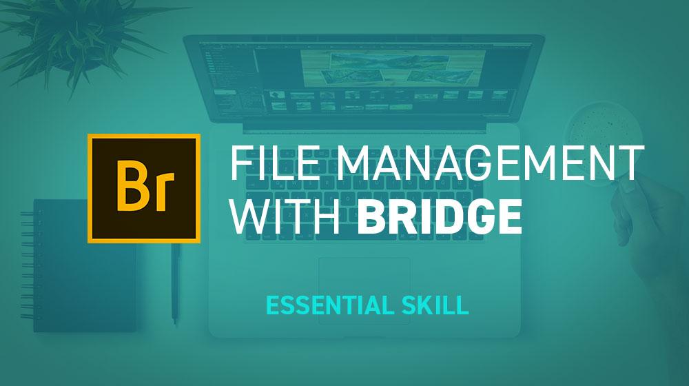 Essential Skills for Designers - Adobe Bridge