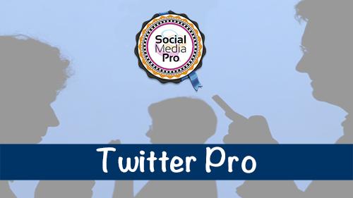 Twitter Pro
