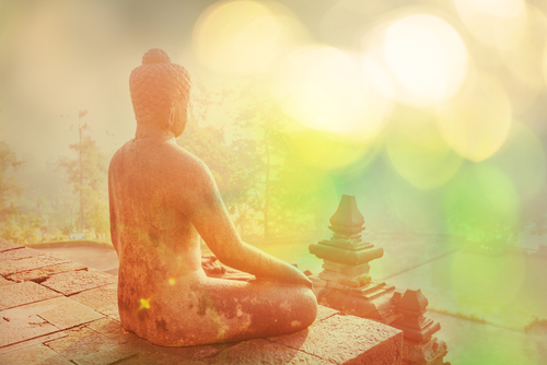 Meditation & Mindfulness Teacher Training