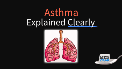 asthma explained clearly