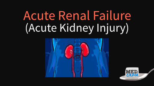 acute renal failure (acute kidney injury) explained clearly