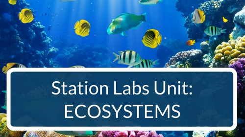 Ecosystems Station Labs Bundle