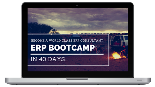 ERP Implementation Consultant Bootcamp