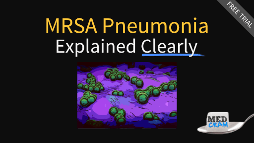 mrsa pneumonia explained clearly
