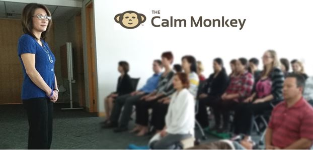 Mindfulness Meditation Facilitator TRAINING course, with toolkit & ongoing training/resources