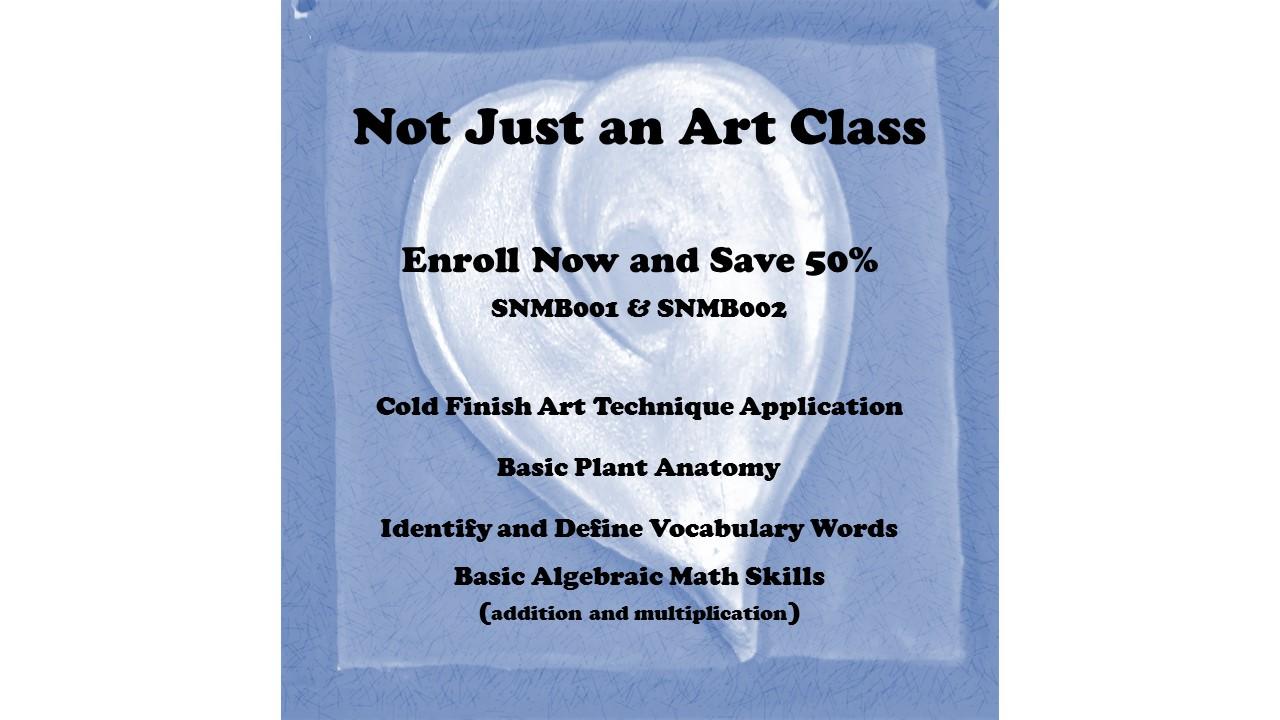 Shawna Barnes\' Ceramic Art Classes