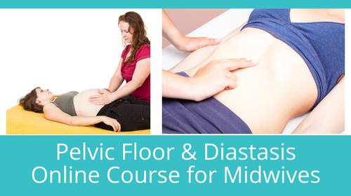 The Pelvic Floor and Diastasis Online Course for Midwives