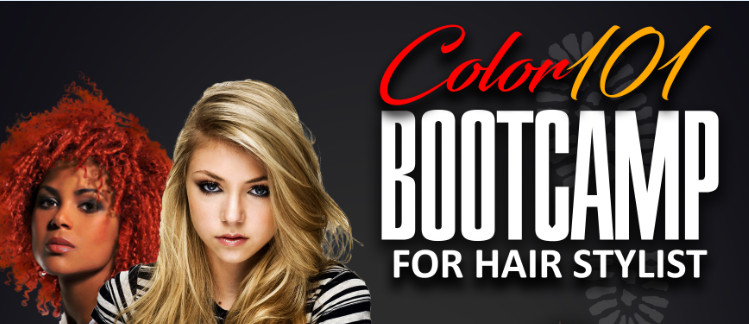 Color 101 Bootcamp for Hairstylists - Houston, TX