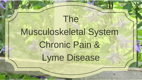 The Musculoskeletal System, Chronic Pain and Lyme Disease