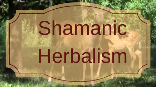 Shamanic Herbalism: Animal Medicines, Plant Medicines and the Spirit