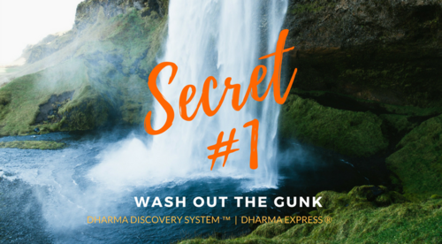 Dharma Secret #1: Wash out the Gunk